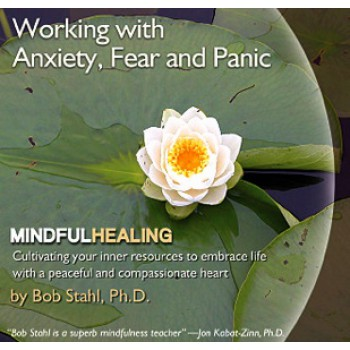 Working with Anxiety, Fear, and Panic CD