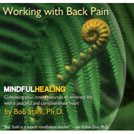 Working with Back Pain